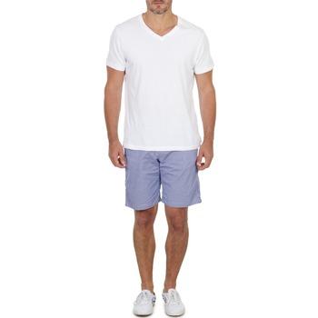 Textiel Heren Korte broeken / Bermuda's Franklin & Marshall GAWLER Blauw / Beige