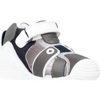 Schoenen Meisjes Sandalen / Open schoenen Biomecanics 212144 Grijs