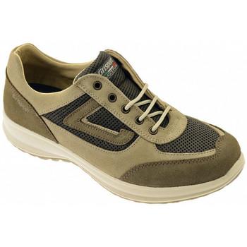 Schoenen Heren Hoge sneakers Grisport  Multicolour