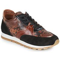 Schoenen Dames Lage sneakers JB Martin GLOIRE Brown