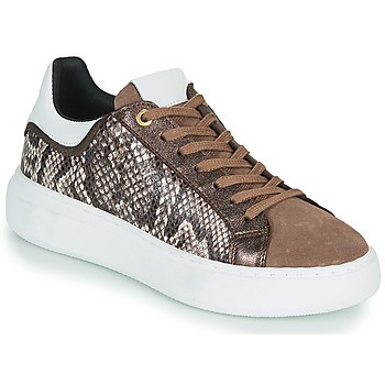 Schoenen Dames Lage sneakers JB Martin HIBISCUS Brown