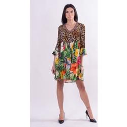 Textiel Dames Korte jurken Fracomina FR21SD1008W422N4 Incolore