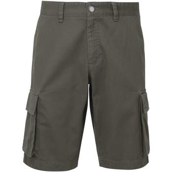 Textiel Heren Korte broeken / Bermuda's Asquith & Fox AQ054 Leisteen