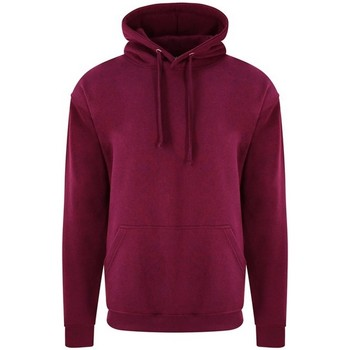Textiel Heren Sweaters / Sweatshirts Pro Rtx RX350 Bourgondië