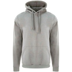 Textiel Heren Sweaters / Sweatshirts Pro Rtx RX350 Grijze Heide