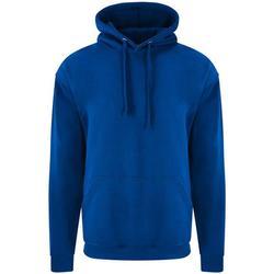 Textiel Heren Sweaters / Sweatshirts Pro Rtx RX350 Koningsblauw