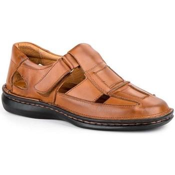 Schoenen Heren Sandalen / Open schoenen Cactus Calzados Sandalia de hombre de piel by Cactus (47 - 49) Marron