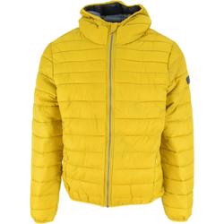 Textiel Heren Dons gevoerde jassen Lotto Bomber Cortina Hd Lg Pad Pl Geel
