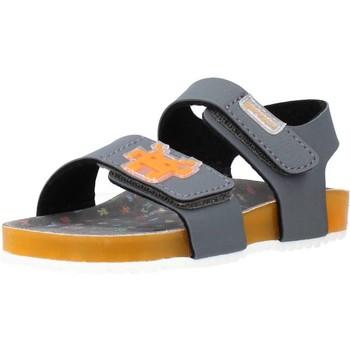 Schoenen Jongens Sandalen / Open schoenen Garvalin 212665 Grijs
