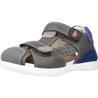 Schoenen Jongens Sandalen / Open schoenen Biomecanics 212184 Grijs