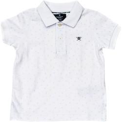 Textiel Jongens Polo's korte mouwen Hackett Polo à manches courtes Multicolour