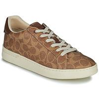 Schoenen Dames Lage sneakers Coach LOWLINE Brown