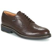 Schoenen Heren Derby Pellet NORMAN Brown