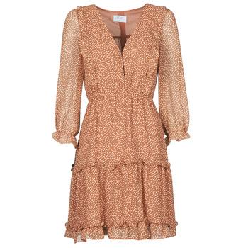 Textiel Dames Korte jurken Betty London OBELLA Rouille