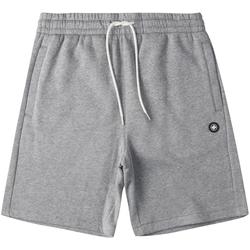 Textiel Heren Korte broeken / Bermuda's DC Shoes Riot Sweat Grijs