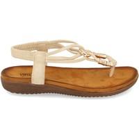 Schoenen Dames Sandalen / Open schoenen Clowse VR1-260 Beige