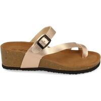Schoenen Dames Sandalen / Open schoenen Silvian Heach M-28 Champan