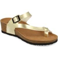 Schoenen Dames Sandalen / Open schoenen Silvian Heach M-28 Oro