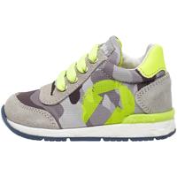 Schoenen Kinderen Sneakers Falcotto 2014939 02 Grijs
