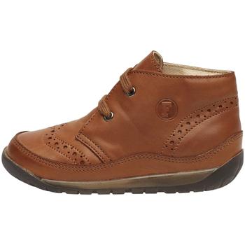 Schoenen Kinderen Hoge sneakers Falcotto 2012798 02 Bruin
