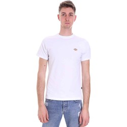 Textiel Heren T-shirts korte mouwen Dickies DK0A4XDAWHX1 Wit
