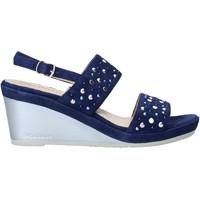 Schoenen Dames Sandalen / Open schoenen Melluso HR70531 Blauw