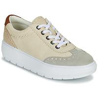 Schoenen Dames Lage sneakers Geox KAULA Grijs