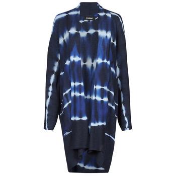 Textiel Dames Vesten / Cardigans Desigual BRUMA Blauw