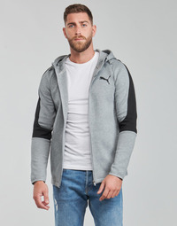 Textiel Heren Sweaters / Sweatshirts Puma EVOSTRIPE CORE FZ HOODIE Grijs / Zwart