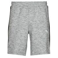 Textiel Heren Korte broeken / Bermuda's Puma EVOSTRIPE SHORTS 8 Grijs / Zwart