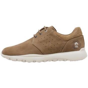 Schoenen Heren Lage sneakers Panama Jack  Brown