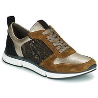 Schoenen Dames Lage sneakers Adige VANILLE2 V3 GALAXY ONYX Brown