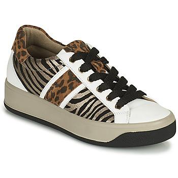 Schoenen Dames Lage sneakers IgI&CO DONNA AVA Wit / Brown