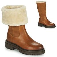 Schoenen Dames Laarzen Geox IRIDEA Brown