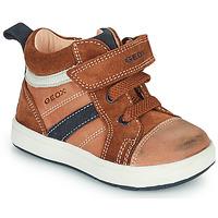 Schoenen Jongens Hoge sneakers Geox BIGLIA Brown