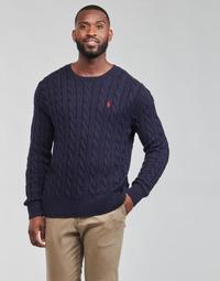 Textiel Heren Truien Polo Ralph Lauren KINNU Blauw