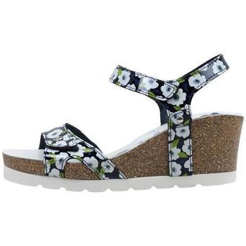 Schoenen Dames Sandalen / Open schoenen Panama Jack  Blauw