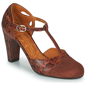 Schoenen Dames pumps Chie Mihara KUNA Brown