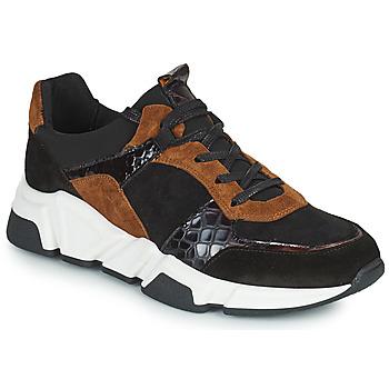 Schoenen Dames Lage sneakers Regard KENO Zwart / Brown