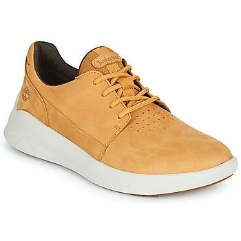 Schoenen Heren Lage sneakers Timberland BRADSTREET ULTRA LTHR OX Beige