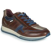 Schoenen Heren Lage sneakers Pikolinos CAMBIL Brown / Blauw