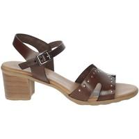 Schoenen Dames Sandalen / Open schoenen Porronet FI2626 Brown