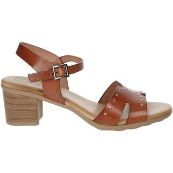 Schoenen Dames Sandalen / Open schoenen Porronet FI2626 Brown leather
