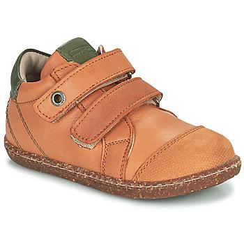 Schoenen Jongens Hoge sneakers Aster WASHAN  camel / Groen