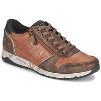Schoenen Heren Lage sneakers Mustang BRICA Brown