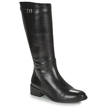 Schoenen Dames Hoge laarzen Dorking MARA Zwart