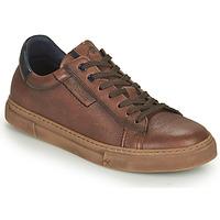 Schoenen Heren Lage sneakers Fluchos NIKO Brown