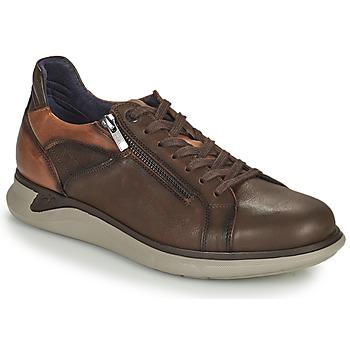 Schoenen Heren Lage sneakers Fluchos COOPER Brown
