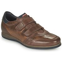 Schoenen Heren Lage sneakers Fluchos DANIEL Brown