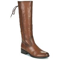 Schoenen Dames Hoge laarzen Gabor 7160624 Brown